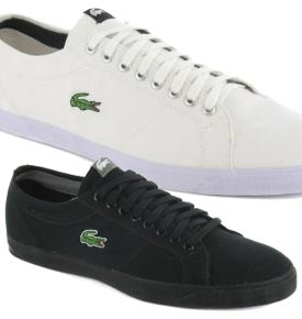Lacoste Marcel Canvas Buy Now 163 37 98 All Sizes