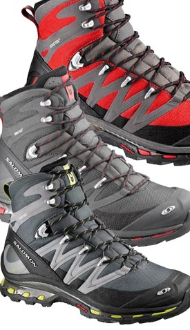 plus récent 5cf60 26063 Salomon Cosmic 4D GTX